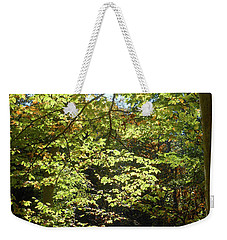 Weekender Tote Bag featuring the photograph Magical Forest Beginning Of Fall by Irina Sztukowski