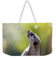 Magical Meerkat Weekender Tote Bag