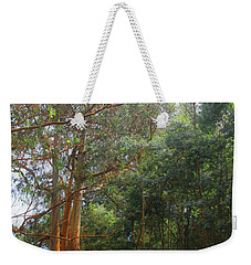 Weekender Tote Bag featuring the photograph Magnificent Maui by DJ Florek