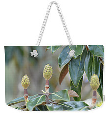 Weekender Tote Bag featuring the photograph Magnolia Buds by Maria Urso