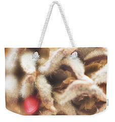 Weekender Tote Bag featuring the photograph Magnolia Seedpod by Elena Nosyreva
