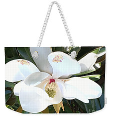 Weekender Tote Bag featuring the photograph Magnolia Tree Bloom by Debra Crank