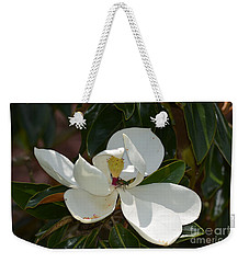Weekender Tote Bag featuring the photograph Magnolia With Beetle by Maria Urso