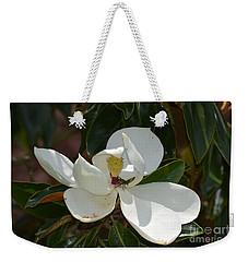 Magnolia With Beetle Weekender Tote Bag by Maria Urso