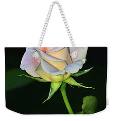 Weekender Tote Bag featuring the photograph Maid Of Honour Rose 001 by George Bostian