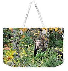 Maine Moose Weekender Tote Bag