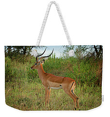Majestic Impala Weekender Tote Bag by Gary Hall