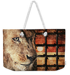 Majestic Lion In Captivity Weekender Tote Bag
