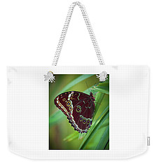 Weekender Tote Bag featuring the photograph Majesty Of Nature by Karen Wiles