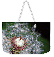 Weekender Tote Bag featuring the photograph Make A Wish by Chris Anderson