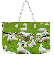 Weekender Tote Bag featuring the photograph Make Room by Mike Dawson
