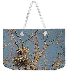 Weekender Tote Bag featuring the photograph Making Babies by David Bearden