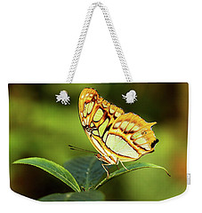 Weekender Tote Bag featuring the photograph Malachite by Grant Glendinning