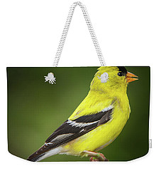 Male American Golden Finch On Twig Weekender Tote Bag