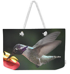 Weekender Tote Bag featuring the photograph Juvenile Male Anna's At Feeder by Jay Milo