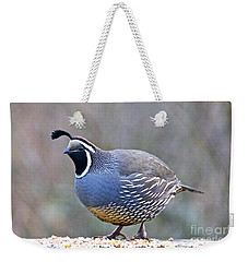 Male California Quail Weekender Tote Bag by Sean Griffin