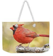 Male Cardinal In Fall Weekender Tote Bag
