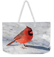 Male Cardinal In Winter Weekender Tote Bag by Kenneth Cole