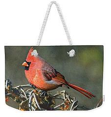 Male Cardinal Weekender Tote Bag by Ken Everett