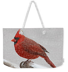Male Cardinal In Snow Weekender Tote Bag by Rand Herron