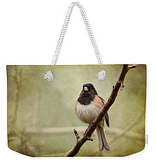 Male Dark-eyed Junco - 365-186 Weekender Tote Bag