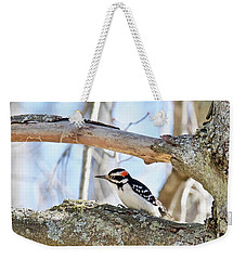 Weekender Tote Bag featuring the photograph Male Downey Woodpecker 1112 by Michael Peychich