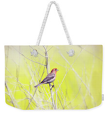 Male Finch On Bare Branch Weekender Tote Bag