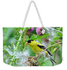 Male Goldfinch Weekender Tote Bag