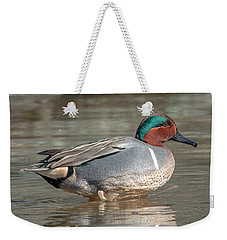 Male Green-winged Teal Dwf0171 Weekender Tote Bag