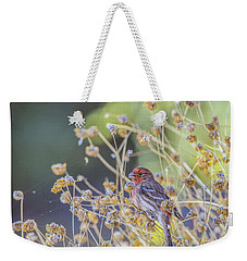 Male House Finch 7335 Weekender Tote Bag