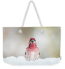Male House Finch Weekender Tote Bag