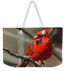 Male Northern Cardinal In Spring Weekender Tote Bag