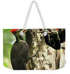 Male Pileated Woodpecker At Nest Weekender Tote Bag