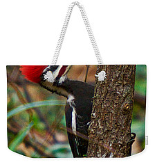 Male Pileated Woodpecker Weekender Tote Bag