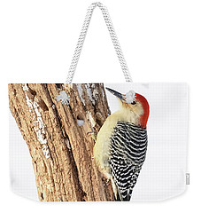 Weekender Tote Bag featuring the photograph Male Red-bellied Woodpecker by Paul Miller