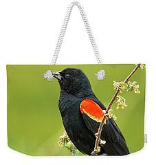 Male Red-winged Blackbird Weekender Tote Bag
