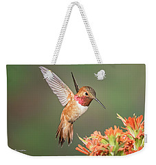 Male Rufus Hummingbird Weekender Tote Bag