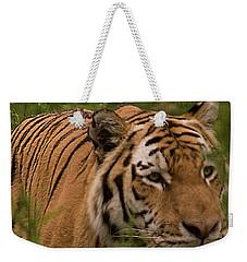 Male Tiger Weekender Tote Bag