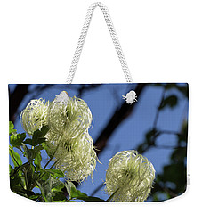 Weekender Tote Bag featuring the photograph Old Man's Beard by Ed Clark