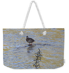 Mallard And The Branch Weekender Tote Bag