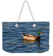 Mallard Drake Duck Swimming Weekender Tote Bag
