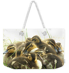 Weekender Tote Bag featuring the photograph Mallard Ducklings by Angie Rea
