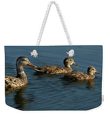 Weekender Tote Bag featuring the photograph Mallard Family Outing by Jean Noren