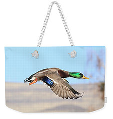 Mallard Flying Over Weekender Tote Bag