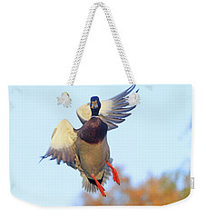 Mallard In Flight 2 Weekender Tote Bag
