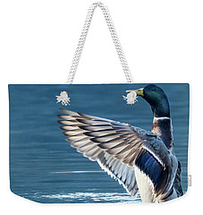 Mallard Stretching Weekender Tote Bag by Matt Malloy