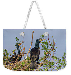 Mama, Papa And Kids - Danube Delta Weekender Tote Bag by Jivko Nakev