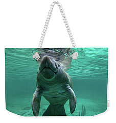 Manatee Breathing Weekender Tote Bag by Tim Fitzharris
