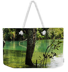 Weekender Tote Bag featuring the photograph Mangrove Mystique 2 by Dianne  Connolly