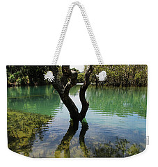 Weekender Tote Bag featuring the photograph Mangrove Mystique 3 by Dianne  Connolly